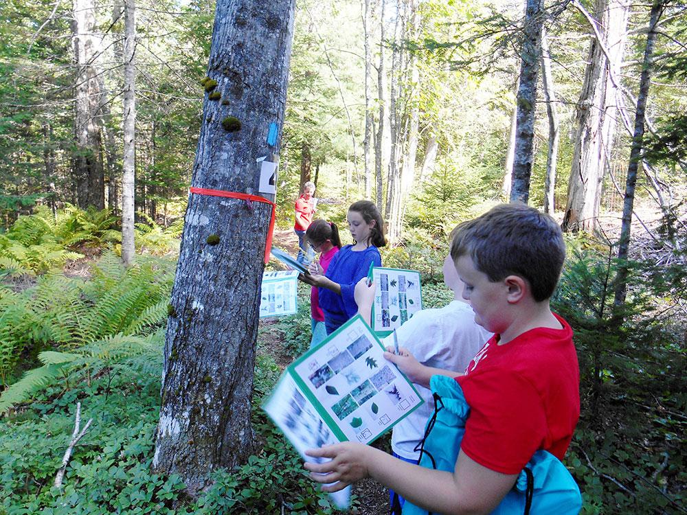 Fifth grade on the Simon Trail. Photo credit Iris Simon.