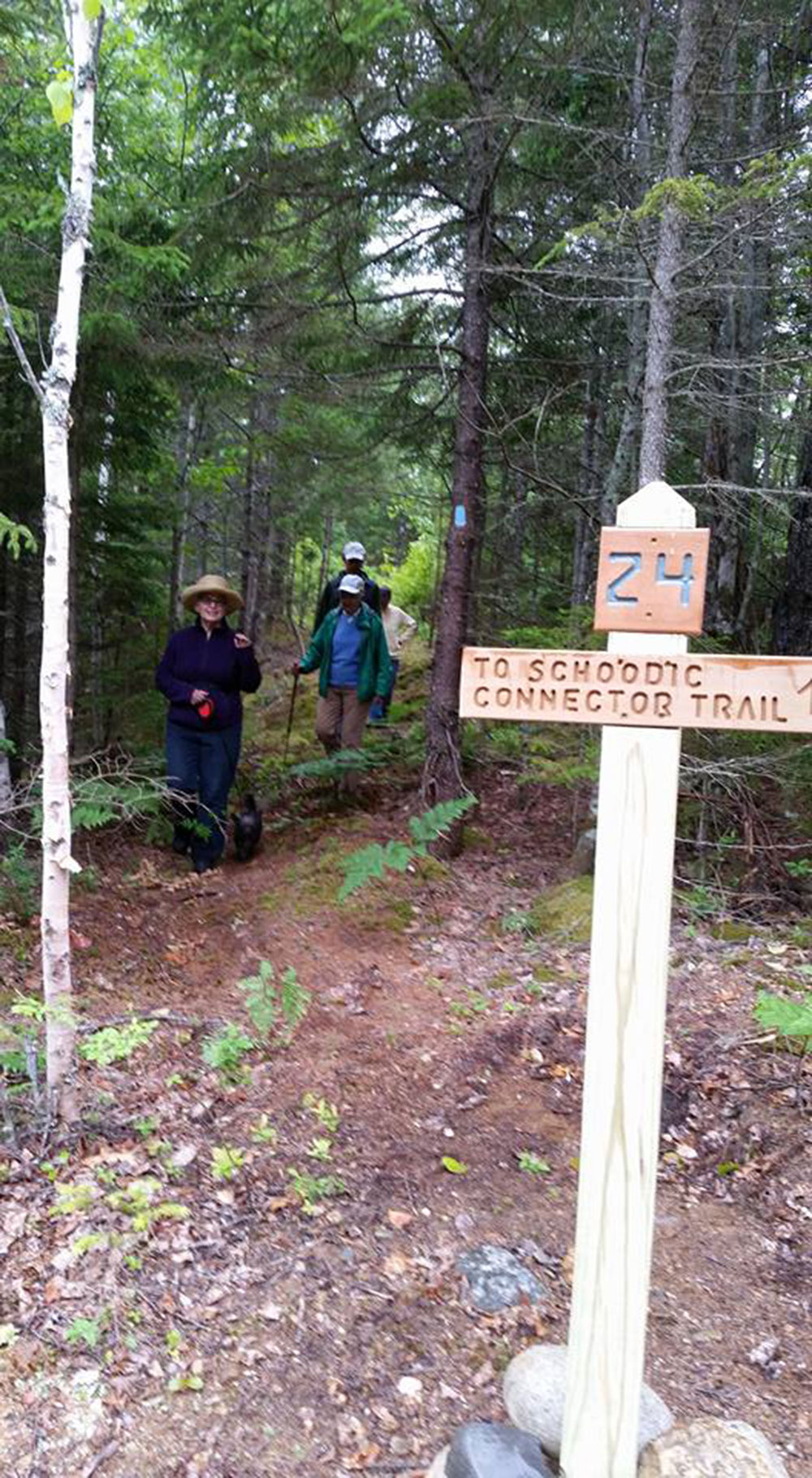 Schoodic Connector Trail. Photo credit Eileen Hall.