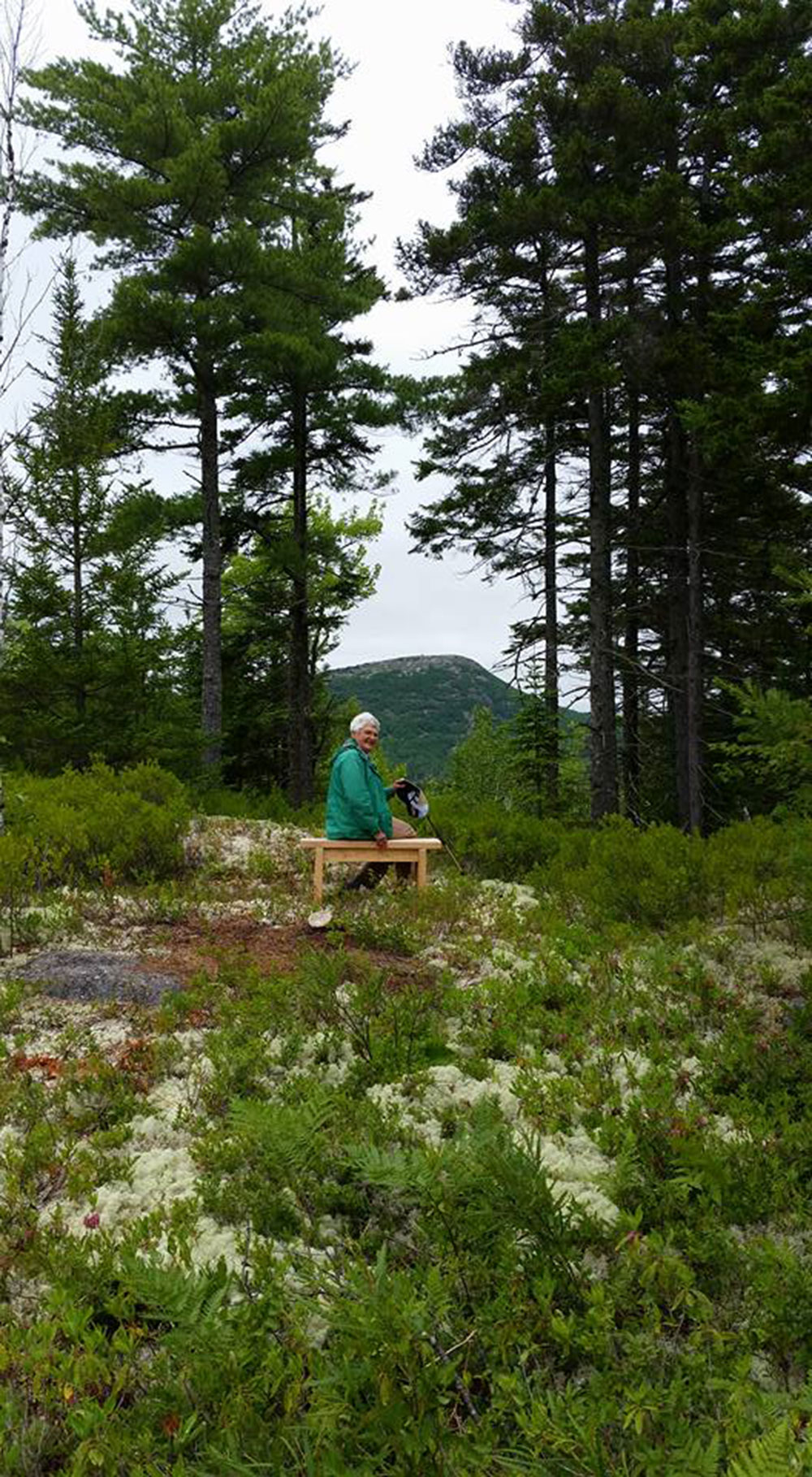 Schoodic Connector Trail with Polly Ceckler on bench. Photo credit Eileen Hall.