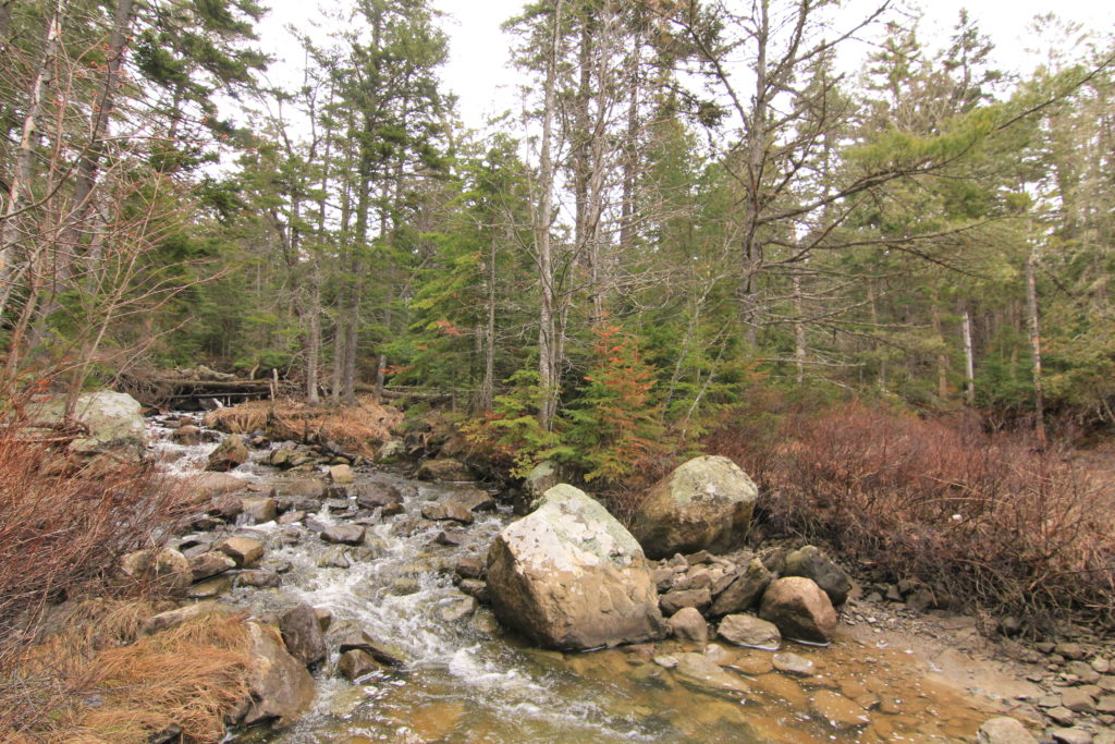 Whittaker Brook on Jordan Homestead Property