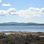 Bean Island. Photo credit Eileen Hall.