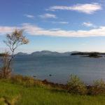 Bean Island. Photo credit Lisa Heyward.