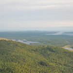 Schoodic Mountain bog, south to point. Photo credit Rob Brooks.