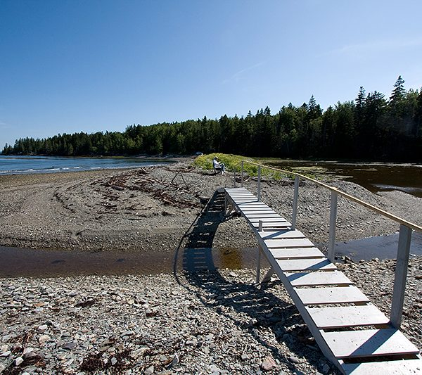 Footbridge at Salt Pond. Photo credit Kelly Bellis.