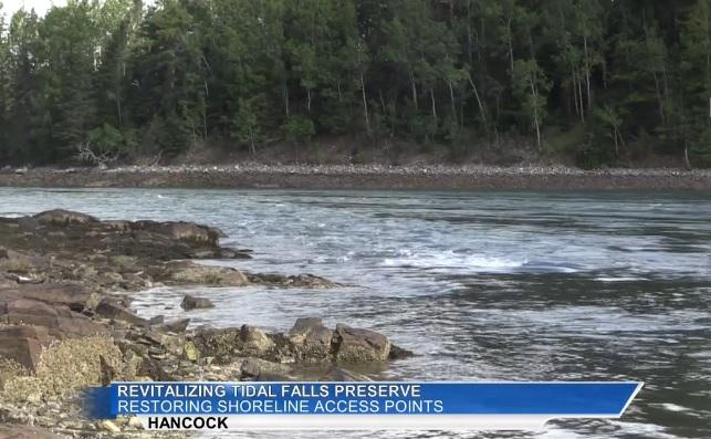 Capital Campaign to Revitalize Tidal Falls Preserve