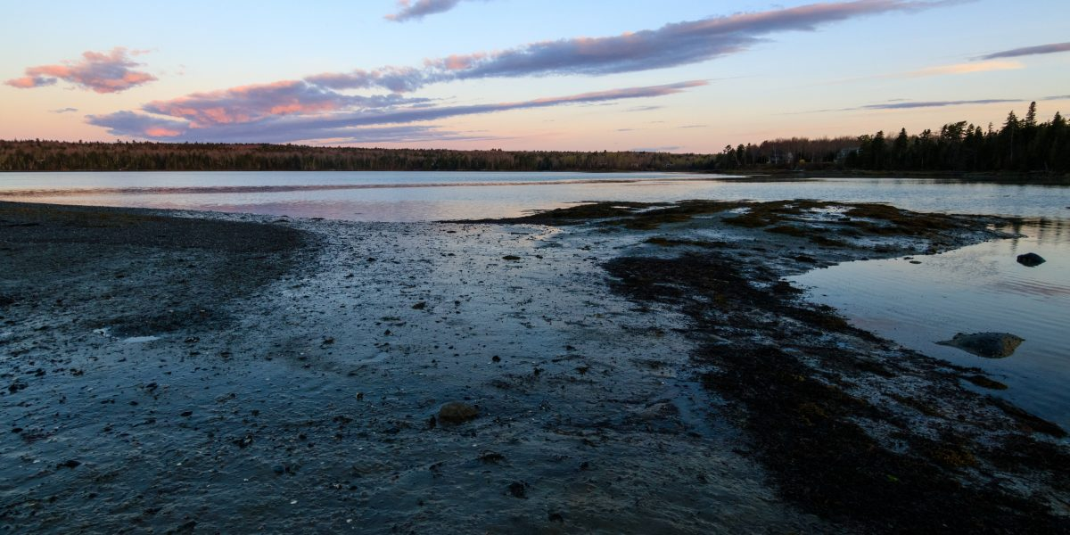Downeast Conservation Network is Hiring