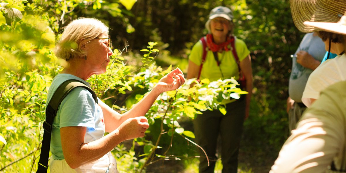 June 5, 2021: Guided Hike at Simon Trail