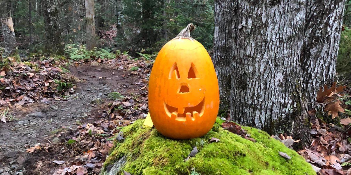 Pumpkin Carving at Tidal Falls Preserve, Sunday, October 25, 2021