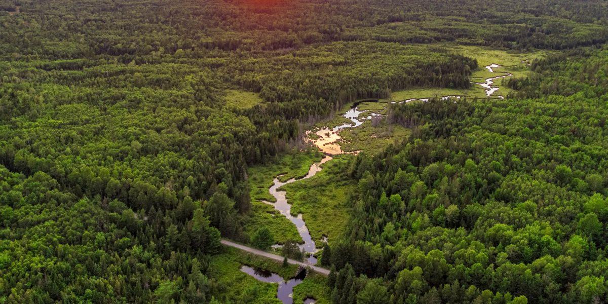 FBC & Local Organizations Request Environmental Impact Statement.